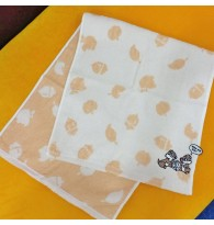 Chip & Dale Long Towel Face Towel
