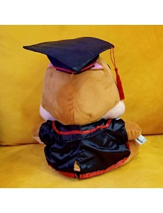 Chip & Dale Graduation Convo Plush Doll